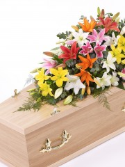 Lily Casket Spray - Vibrant