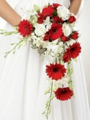 Crimson Gerbera & Orchid Shower Bridal Bouquet