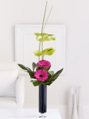 Gerbera and Anthurium Vase
